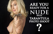 Are You Ready For a Nude with Tarantula Photo Shoot?